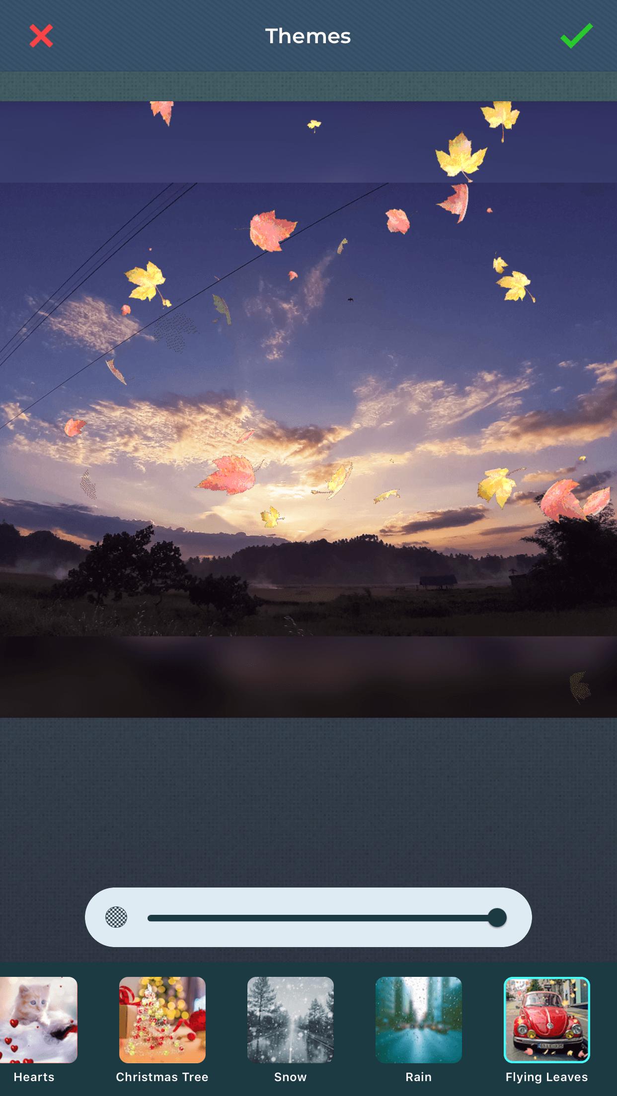Apply beautiful themes to slideshow using slideshow maker app.